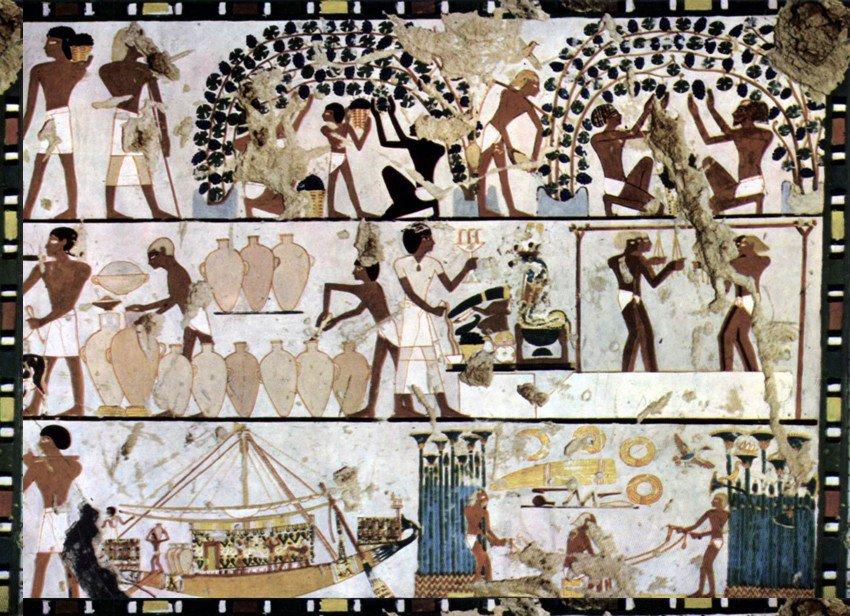 processo de fabricacao de vinho pelos egipcios